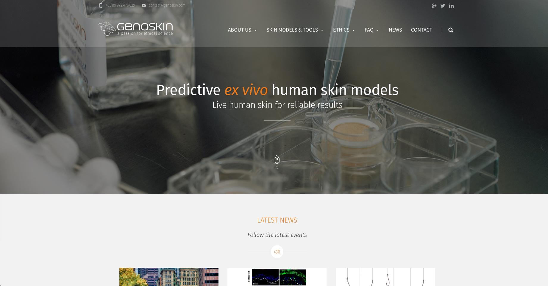 Genoskin human skin models new website