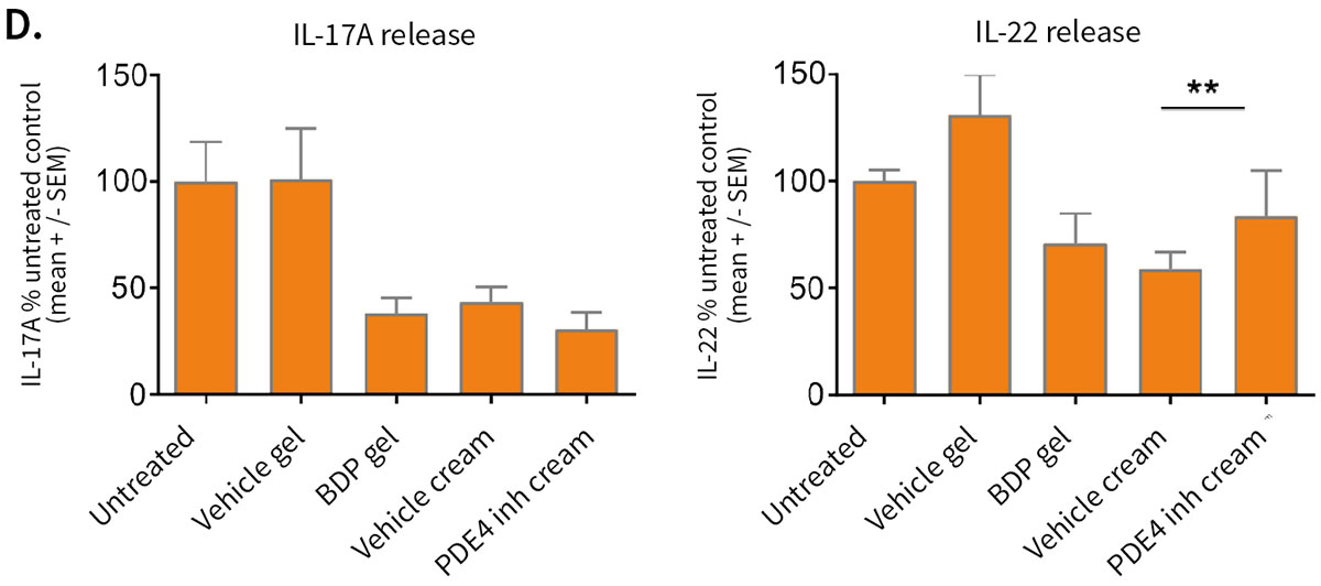 Evaluation of pharmacological responses in InflammaSkin