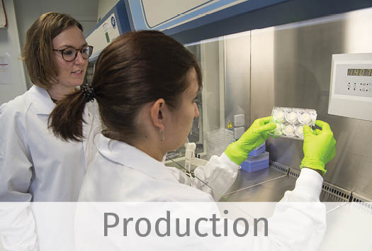 Two skin experts of our production team in the lab. Checking the quality of HypoSkin® assays.