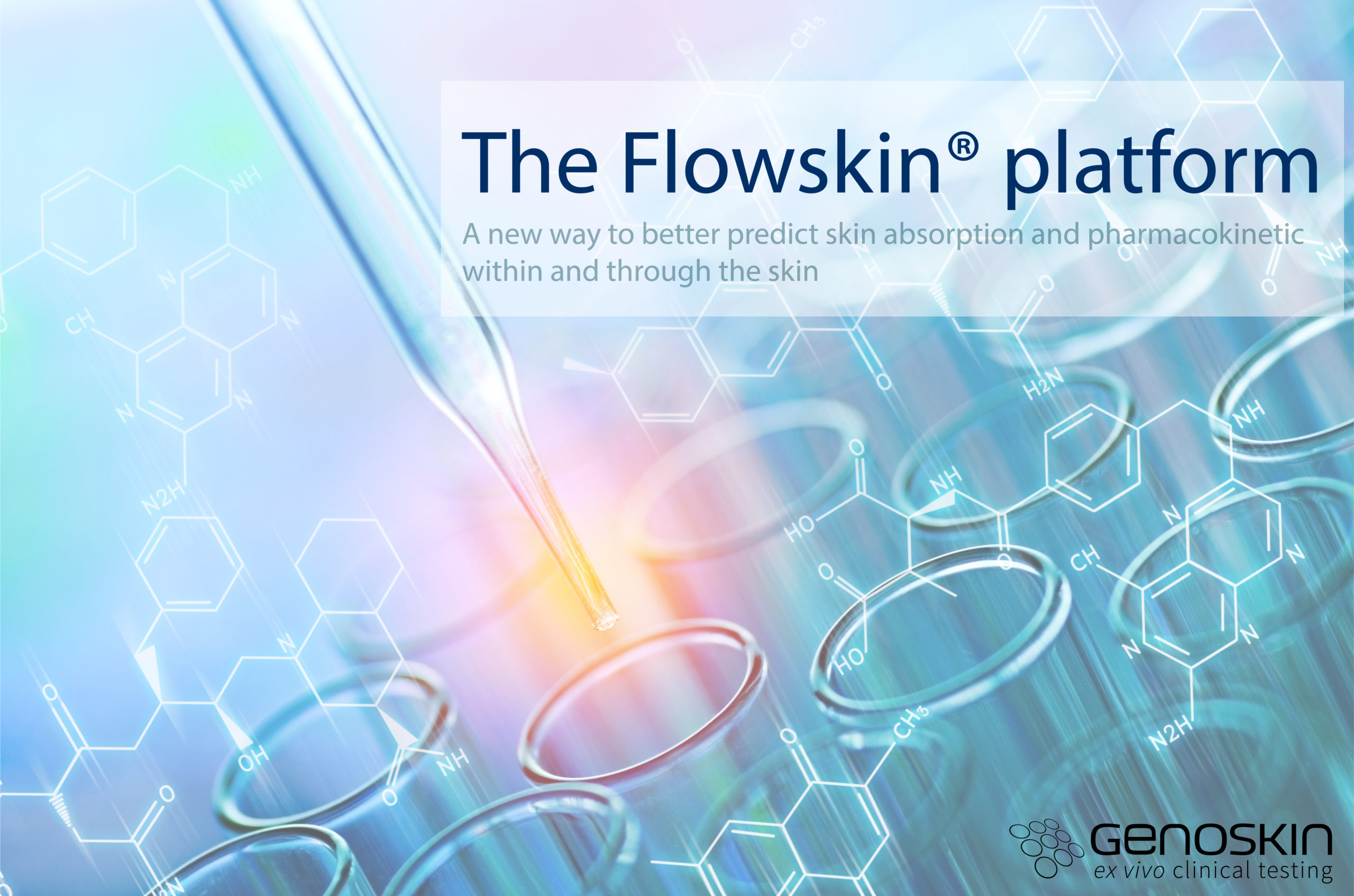 a perfused human skin platform to better predict skin absorption